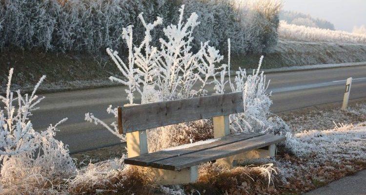 Осінній мороз