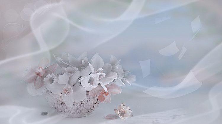 Квіти кохання